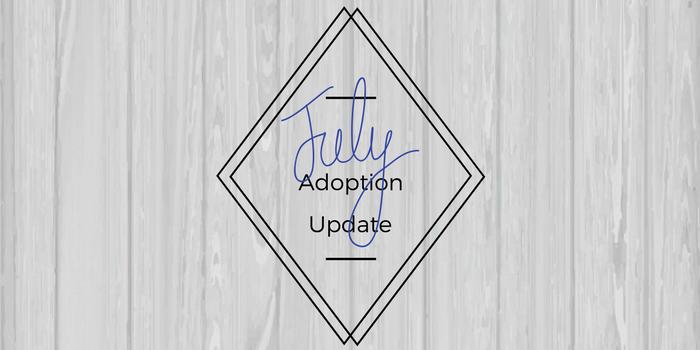 July Adoption Update